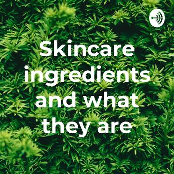 Skincare ingredients and what they are