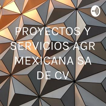 PROYECTOS Y SERVICIOS AGR MEXICANA SA DE CV