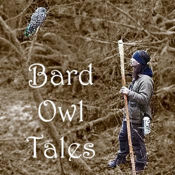 Bard Owl Tales