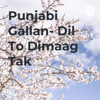 Punjabi Gallan- Dil To Dimaag Tak