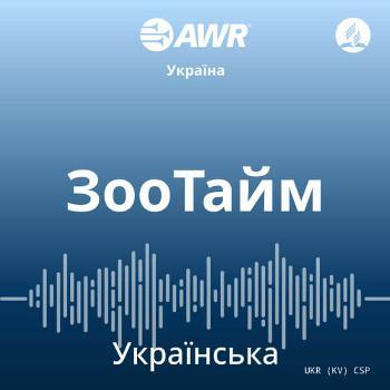 AWR in Ukranian - ???????