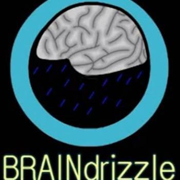 Braindrizzle