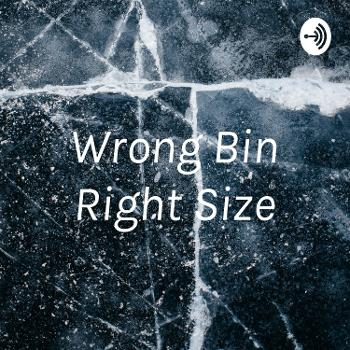 Wrong Bin Right Size