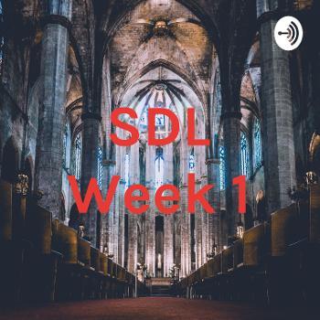 SDL Week 1