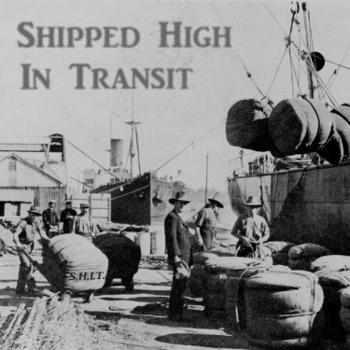 Shipped High In Transit
