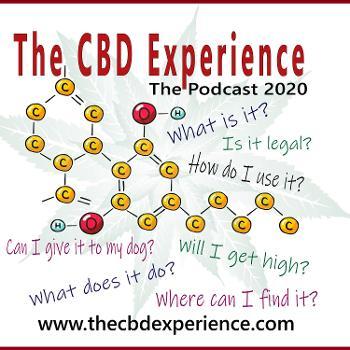 The CBD Experience