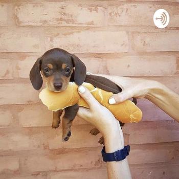 The Hot Dog Bun Dog
