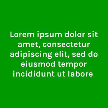 Lorem ipsum dolor sit amet, consectetur adipiscing elit, sed do eiusmod tempor incididunt ut labore