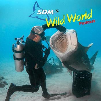 SDM's Wild World