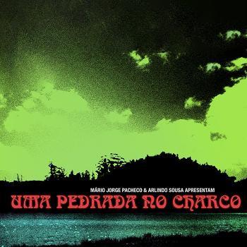 UMA PEDRADA NO CHARCO