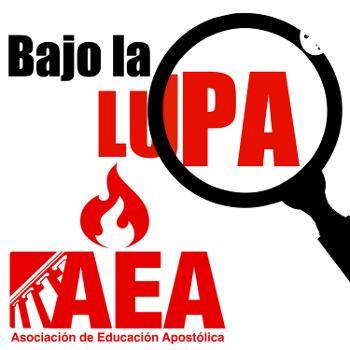 BAJO LA LUPA – Asociación de Educación Apostólica (AEA)