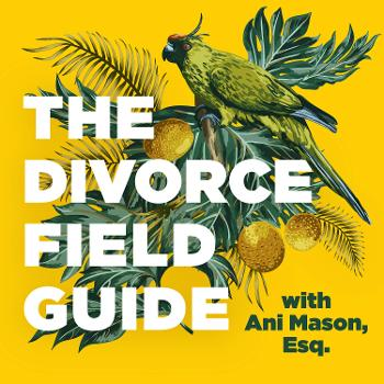 The Divorce Field Guide