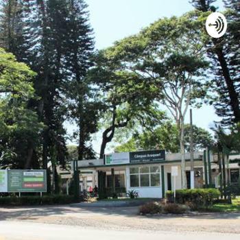 A vida no Campus Araquari em tempos de pandemia