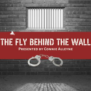 The Fly Behind The Wall