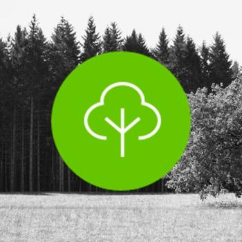 Tree Service Clarksville TN Montgomery County FAQ