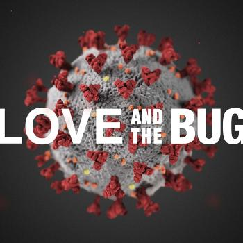 Love and the Bug