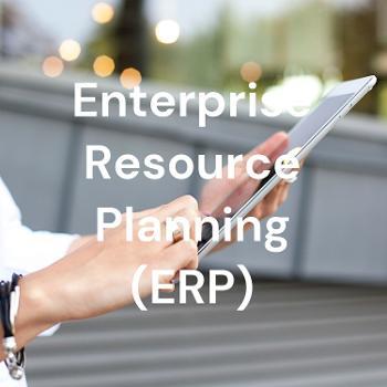 Enterprise Resource Planning Consultant