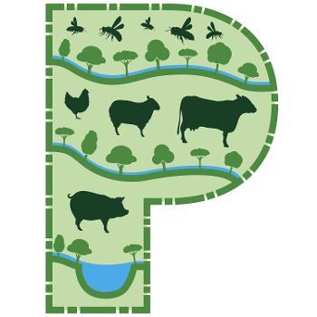 Permaculture Pimpcast