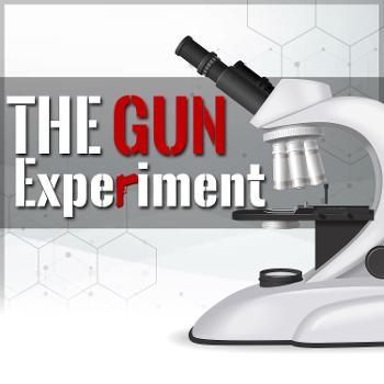 The Gun Experiment