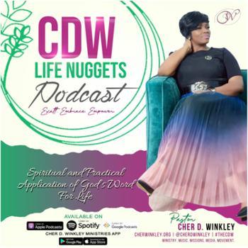 CDW LIFE Nuggets
