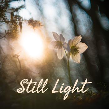 Still Light