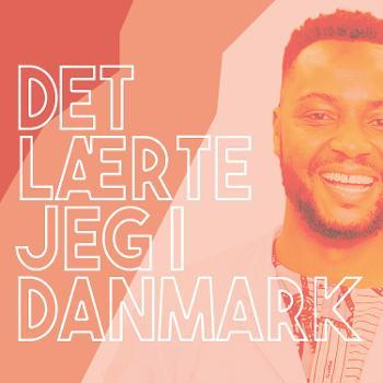 Det lærte jeg i Danmark