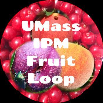 UMass IPM Fruit Loop