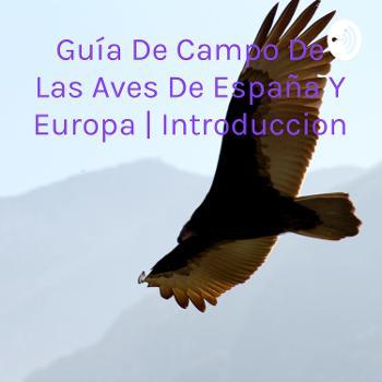 Guía De Campo De Las Aves De España Y Europa | Introduccion