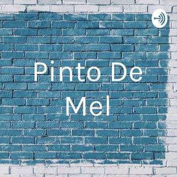 Pinto De Mel