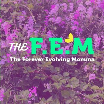 The FEM Podcast