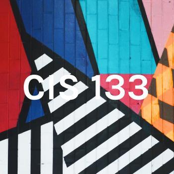 CIS 133