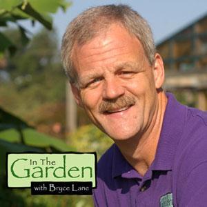 In The Garden 600   UNC-TV