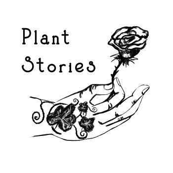PlantStories: The Modern, the old, and the crazy in between!