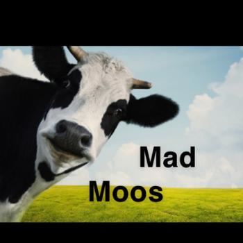 Mad Moos