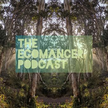 The Ecomancer Podcast