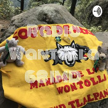 Radio Wantolla 68 IMD