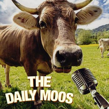 The Daily Moos