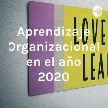 Aprendizaje Organizacional en el año 2020