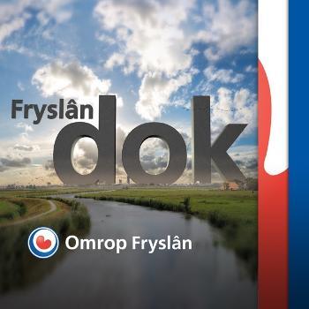 Fryslân DOK, ferhalen fan it flakke lân
