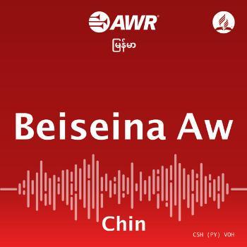 AWR - Beiseina Aw