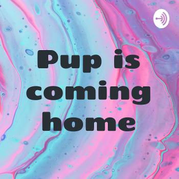 Pup is coming home