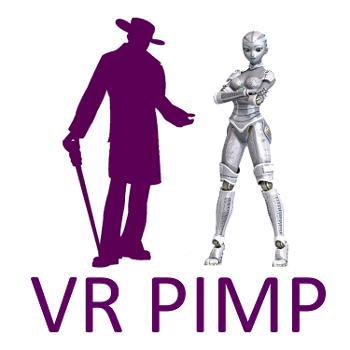 VR Pimp: Virtual Reality, Porn & High-Tech Sex