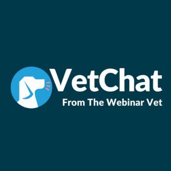 VetChat from The Webinar Vet