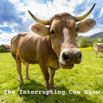 The Interrupting Cow Show