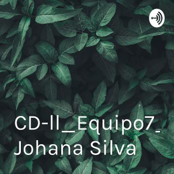 CD-ll_Equipo7_intB2 By Johana Silva