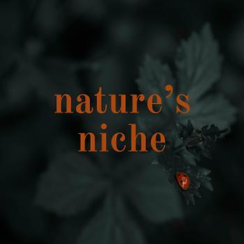 nature's niche