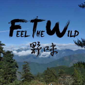 Feel The Wild ?????