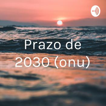 Prazo de 2030 (onu)