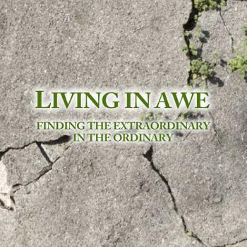 Living in Awe