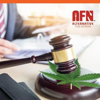 Cannabis Legalization & Edibles: Pre-legalization